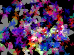 Multi Butterflies