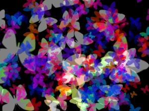 Multi Butterflies
