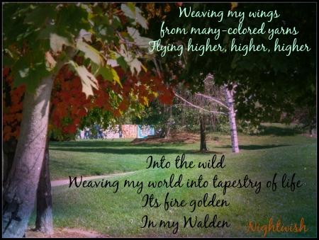 my walden tree mood